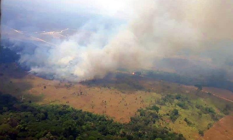 Pantanal, Cerrado, Caatinga, Mata Atlântica e Amazônia tiveram aumento em focos de incêndio em 2019, aponta Inpe