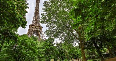Paris irá plantar florestas urbanas para combater calor