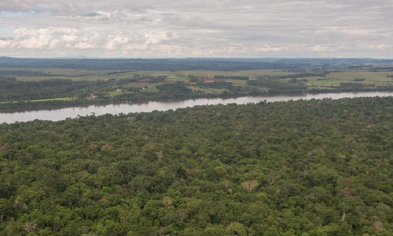 Reabertura de estrada que corta Parque Nacional do Iguaçu coloca em risco título de Patrimônio Natural da Humanidade e pode aumentar da violência na região