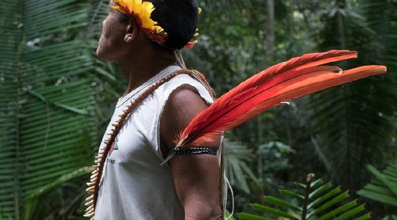 Campanha da Anistia Internacional exige que governo brasileiro proteja direitos dos povos indígenas e Amazônia