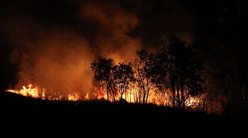 Focos de queimadas aumentam 106% após decreto que proíbe uso do fogo