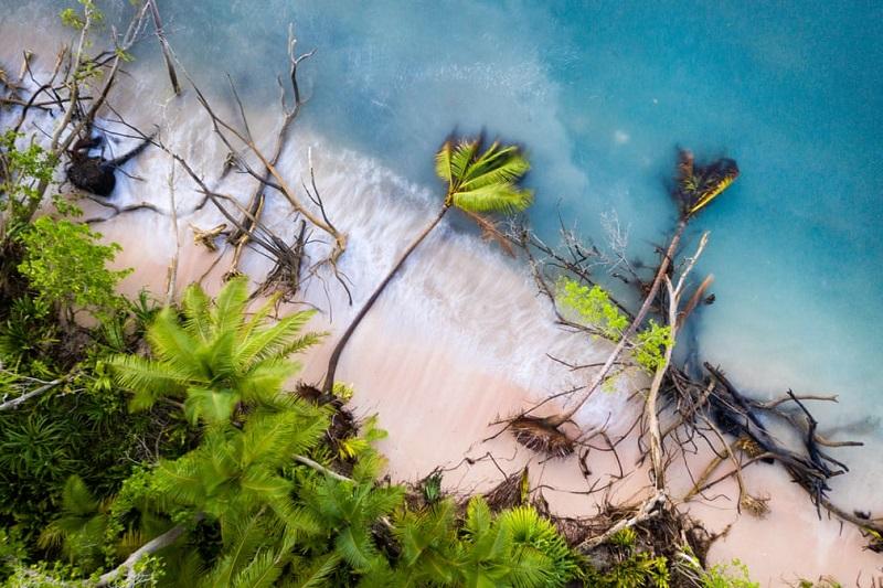 Imagens vencedoras do Environmental Photographer of the Year 2019 revelam impacto assustador da crise climática