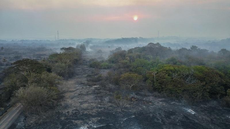 Degradação da Floresta Amazônica tem aumento de quase 800% em setembro, aponta alerta de desmatamento do Imazon