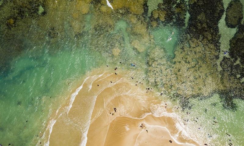 Expedição revela impacto invisível da contaminação do óleo nos recifes de corais do litoral nordestino