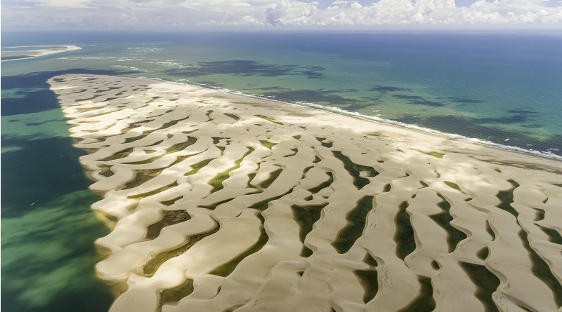 Uma tonelada de resíduos de óleo é retirada do Delta do Parnaíba, no Piauí, e rios são descontaminados em Pernambuco