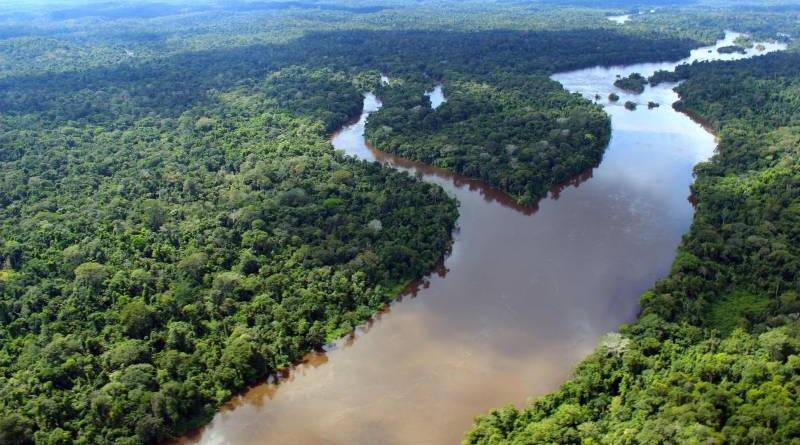 Estados da Amazônia anunciam parceria com a França para projetos de preservação da floresta
