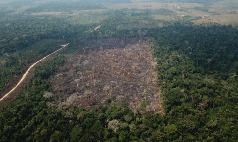 Desmatamento na Amazônia nos últimos 6 meses já é maior do que o registrado no ano todo de 2018
