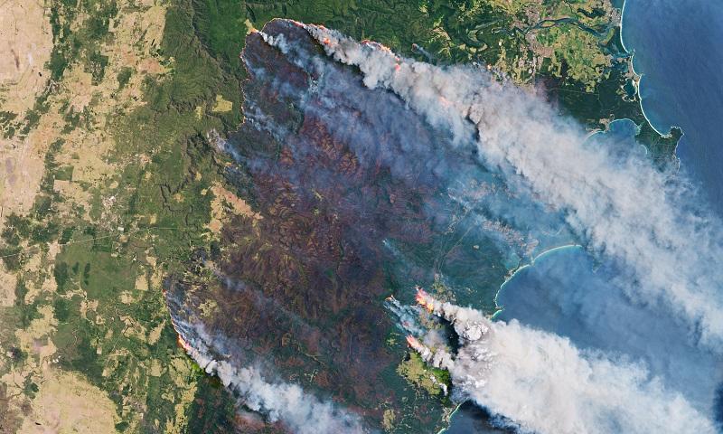 Incêndios da Austrália destruíram 20% das florestas do país