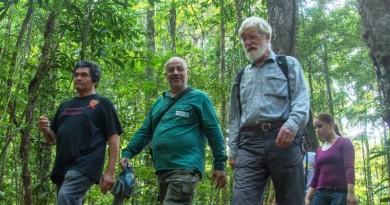 Botânico Ghillean Prance caminha na Floresta Amazônica