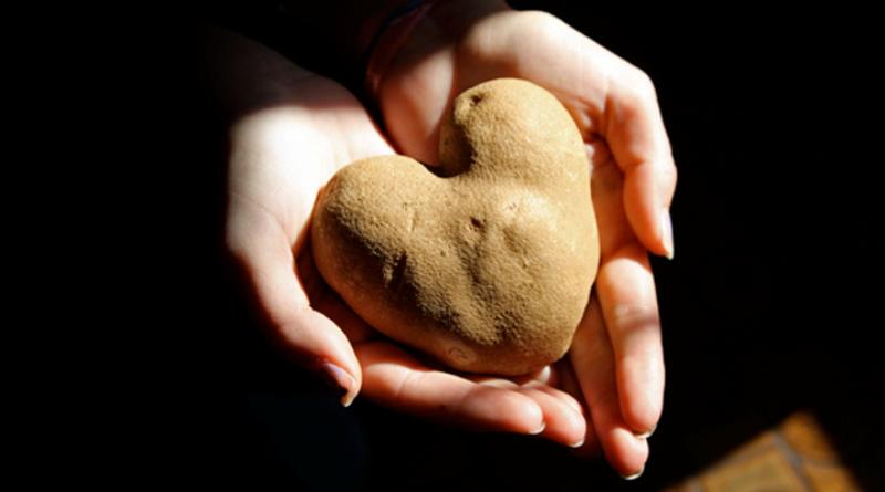 mao-batata-forma-coração