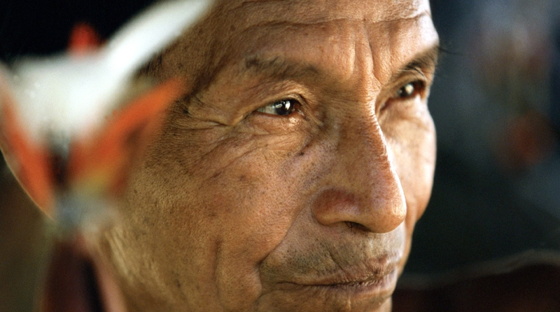 indio da amazônia