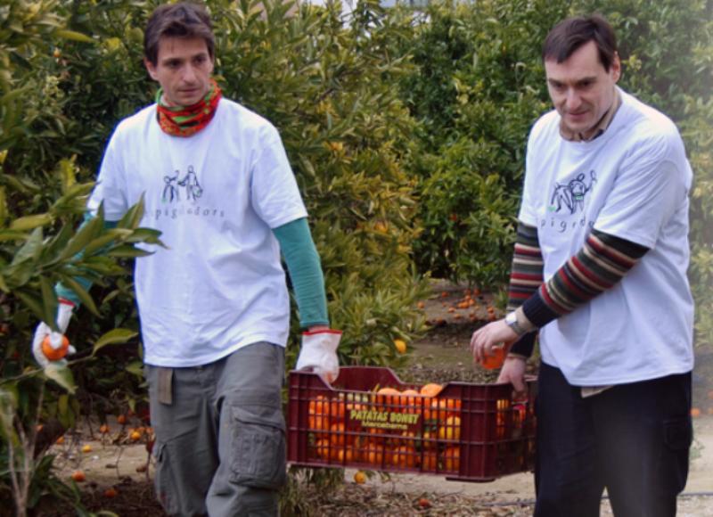 voluntarios-espigoladors-recolhem-alimentos