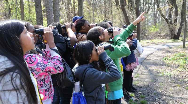 leve-as-criancas-para-observar-aves-Walton-LaVonda