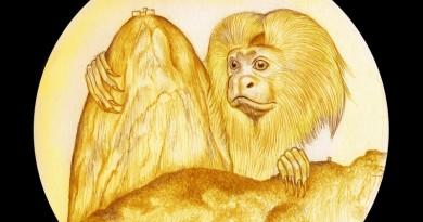 medalha com mico leão dourado