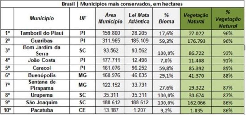 ranking desmatamento