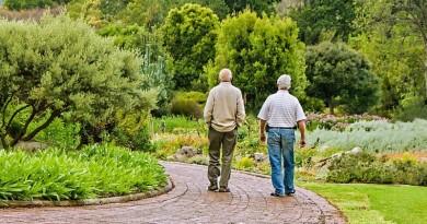 pessoas idosas envelhecimento