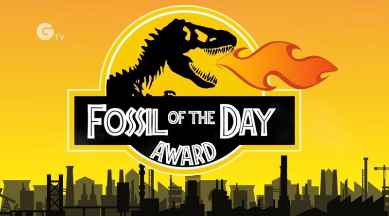 fossil-do-dia-800