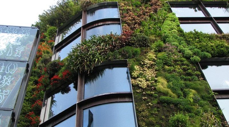 jardim-vertical-800x445