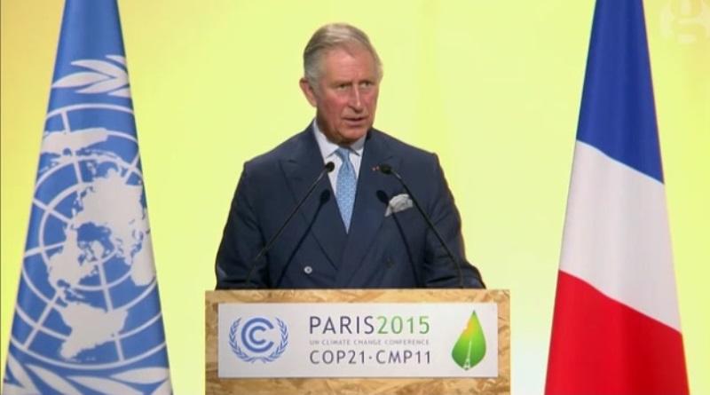 Príncipe Charles diz que não há plano B para mudanças climáticas sem florestas