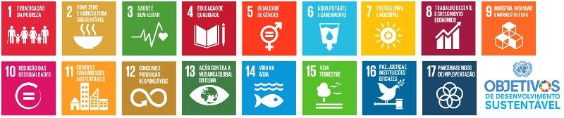 agenda-2030-icones-ODS-800