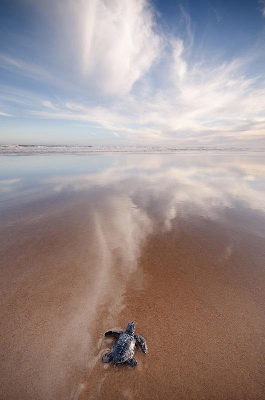 praia-800