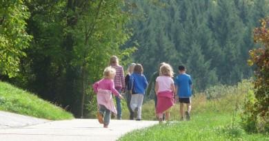 crianças andando em meio à natureza