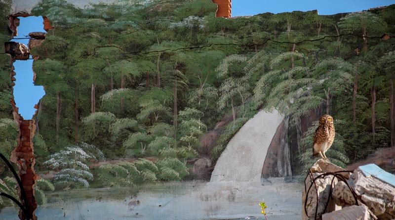 afnatura-primeiro-lugar-Homem-Natureza-Raphael-Genuíno-de-Araújo-800