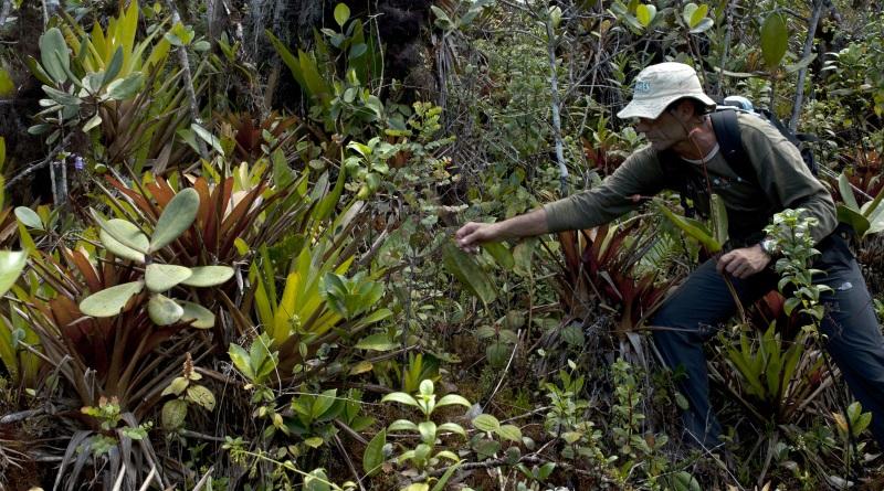 expedicao-jardim-botanico-amazonia-2-800