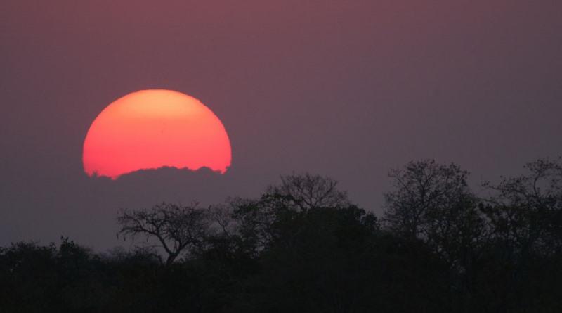 zig-koch-vivencia-fotografica-por-do-sol-pantanal-800