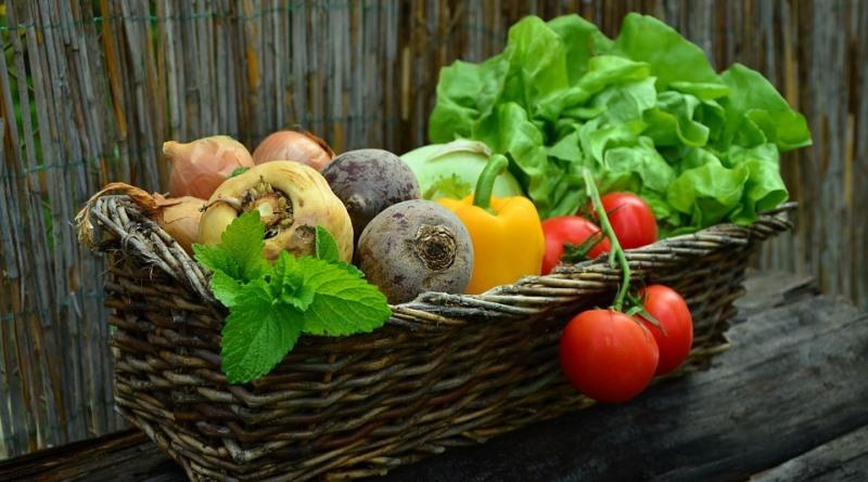 cesta com colheita de frutas e legumes