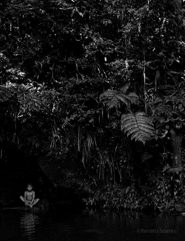 mata-atlantica-aldeia-pindo-guarani-renato-soares