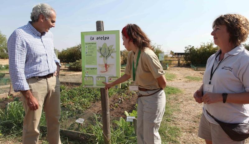 aluguel-horta-pode-realizar-sonho-agricultores-urbanos-2-800