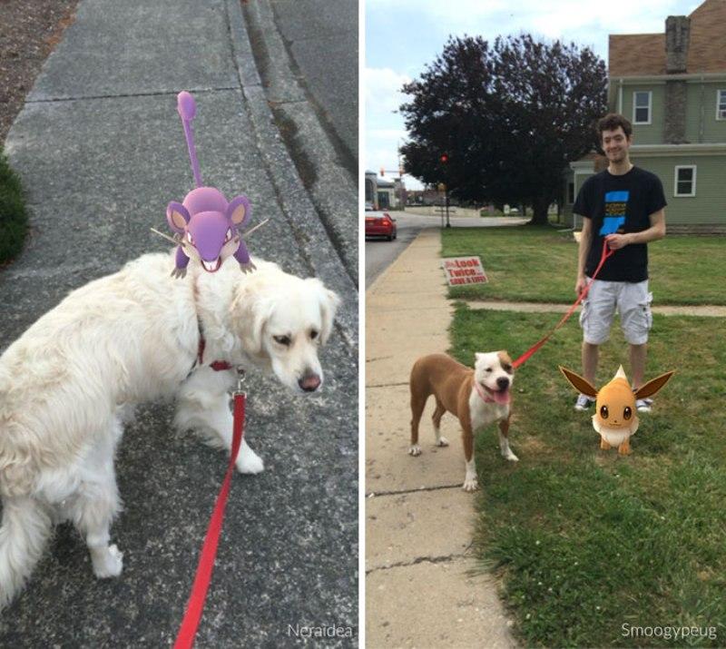 pokemon-go-jogador-cachorro4