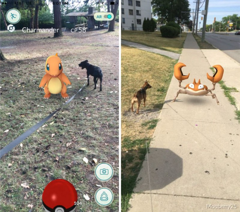 pokemon-go-jogador-cachorro7