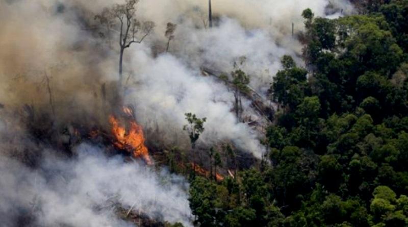 desmatamento-na-amazonia-e-o-maior-em-quatro-anos