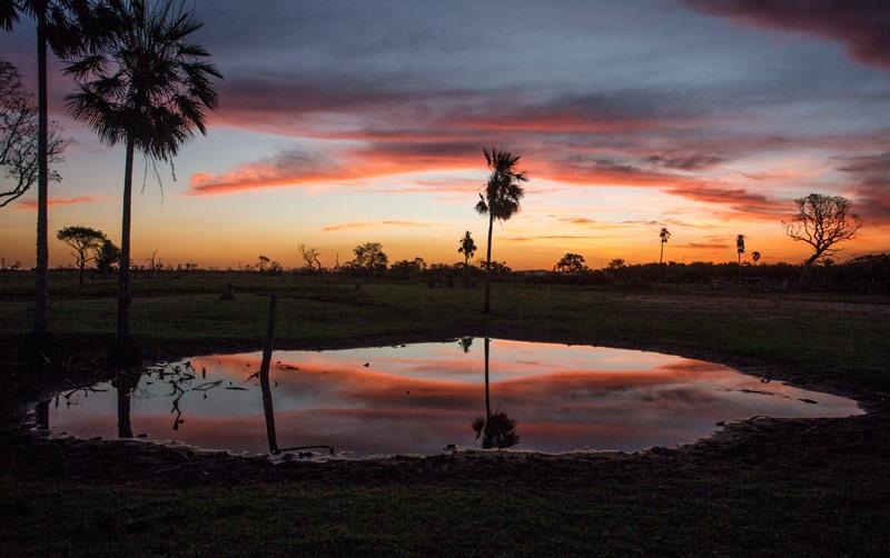 seu-ruivaldo-fazenda-pantanal-4-800