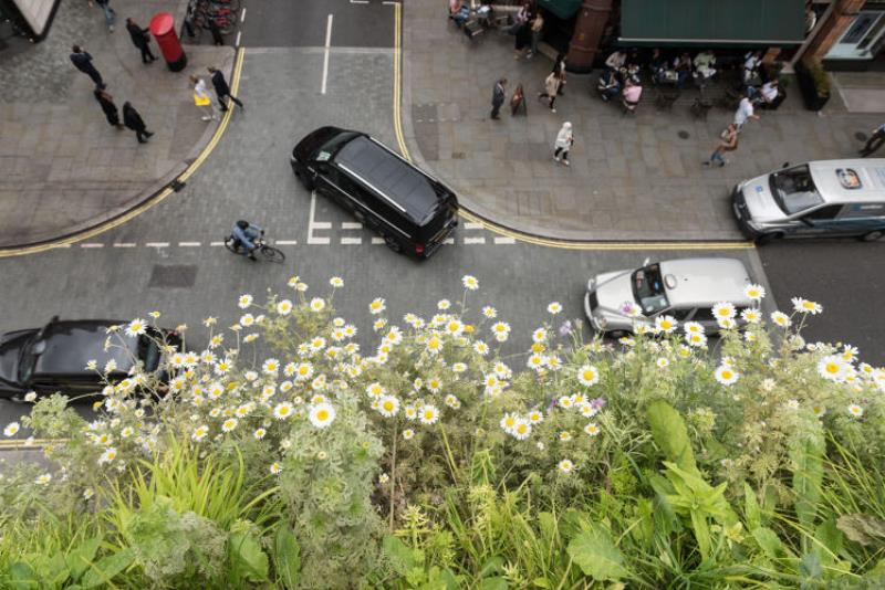 arquitetos-apostam-jardim-vertical-reduzir-barulho-poluicao-3-construcao-conexao-planeta