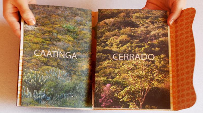 caatinga-cerrado-folder4