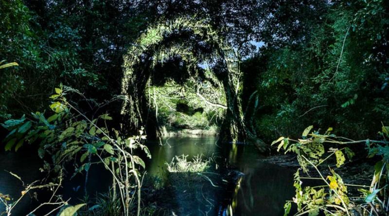 desmatamento-fotografo-frances-retrata-indios-surui-projeta-floresta-amazonica-4-800