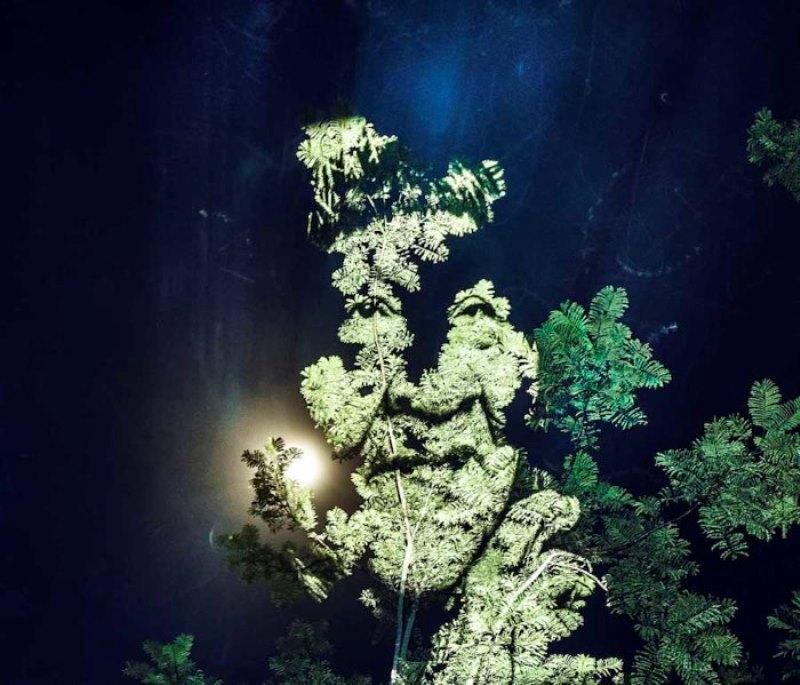 desmatamento-fotografo-frances-retrata-indios-surui-projeta-floresta-amazonica-7