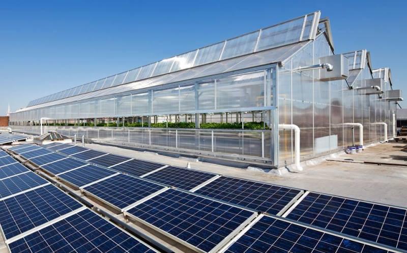 fazendas-urbanas-espalham-telhados-nova-york-chicago-7-conexao-planeta