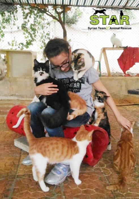 star-voluntario-animais-resgate-siria