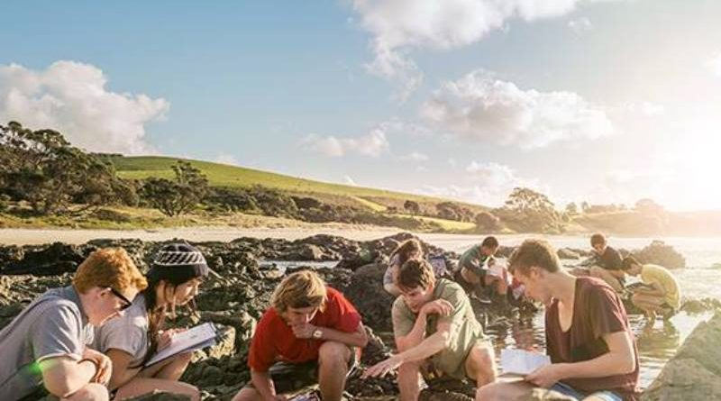 Universidade da Nova Zelândia oferece bolsas para programas de doutorado
