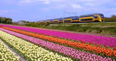Todos os trens da Holanda já são movidos com energia eólica