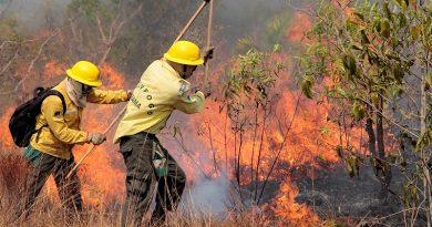 Incêndios crescem 58% no Parque Indígena do Xingu devido à expansão do agronegócio, afirma Ibama