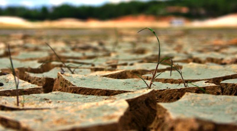 segue o seco