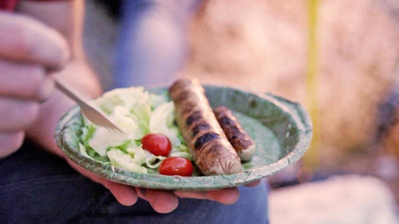 pratos descartáveis e biodegradáveis