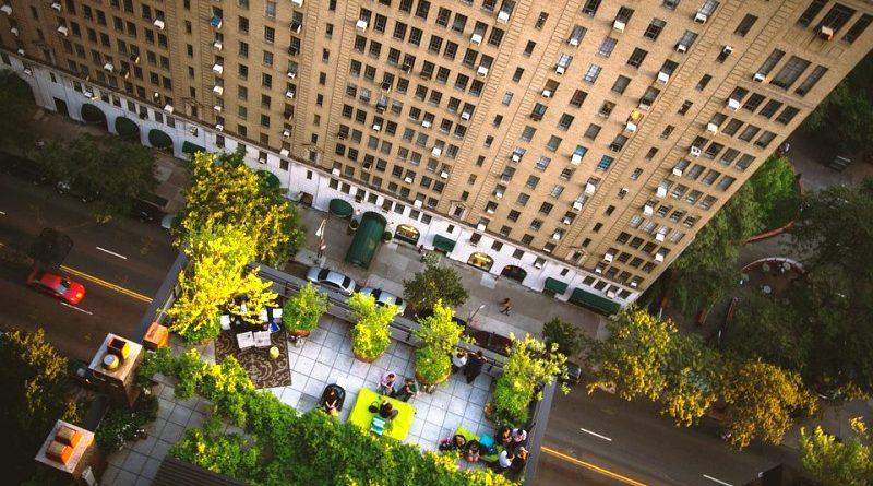 Nova York vai investir US$106 milhões em telhados verdes e plantio de árvores para combater o calor