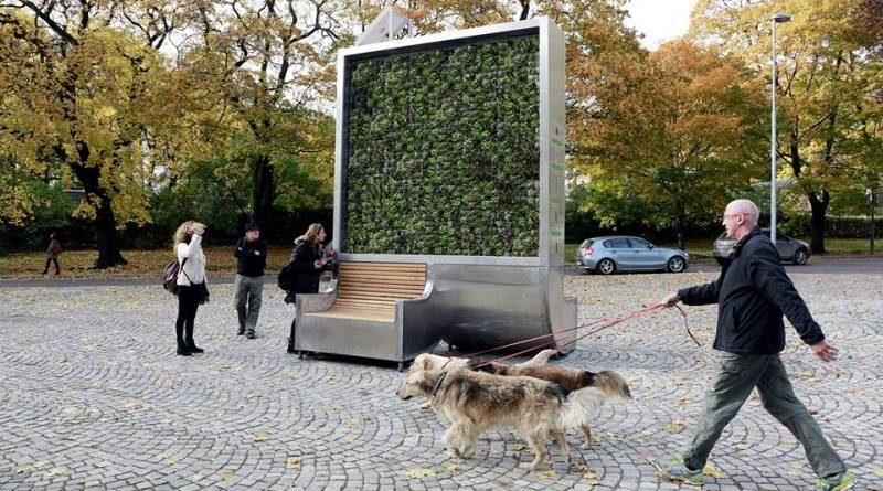 Parede de musgo faz papel de 275 árvores ao filtrar poluição do ar