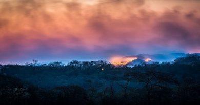incêndio no Cerrado